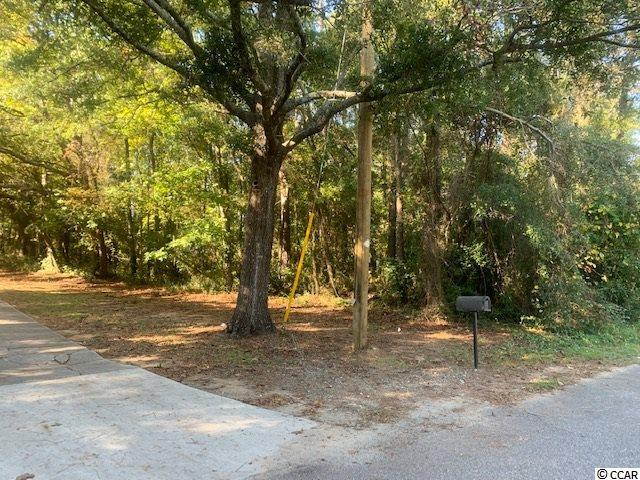 Lot 18 Midway Dr, Pawleys Island, 29585, SC - Photo 1 of 4