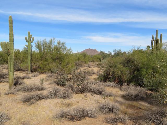 8002 E Vista Bonita Dr, Scottsdale, 85255, AZ - Photo 1 of 6