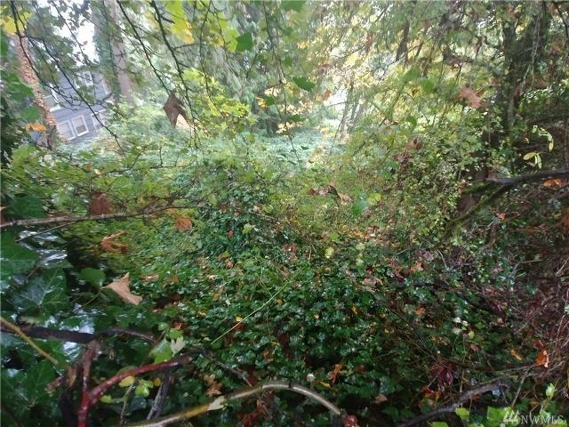 0 33rd, Seattle, 98118, WA - Photo 1 of 6