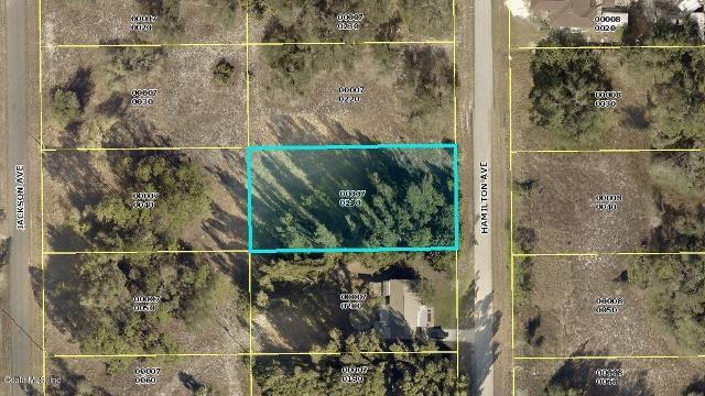 1617 Hamilton, Lehigh Acres, 33972, FL - Photo 1 of 1