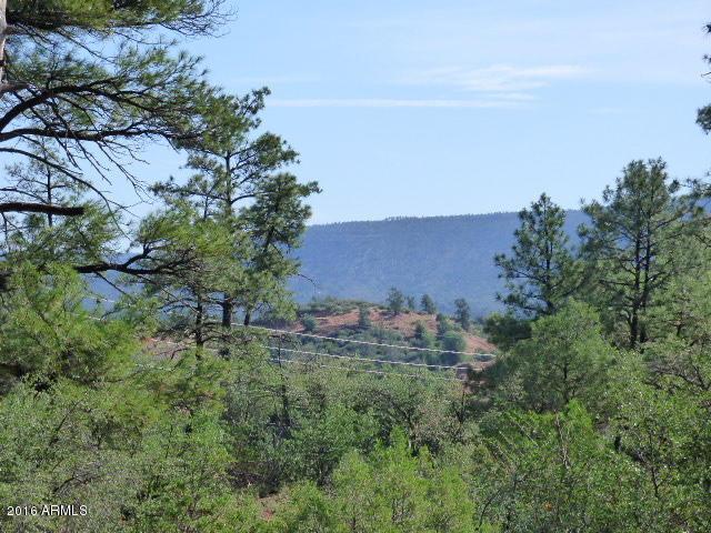 39 E Saddleback Trl, Star Valley, 85541, AZ - Photo 1 of 10