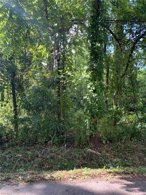 Tuscarawas, Barberton, 44203, OH - Photo 1 of 1