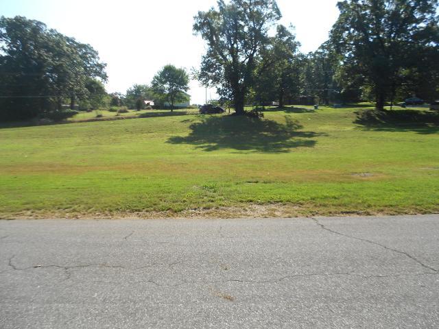 313 Buchanan, Joplin, 64801, MO - Photo 1 of 2