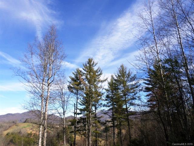 5 Treeline Trl Unit 5, Waynesville, 28785, NC - Photo 1 of 36