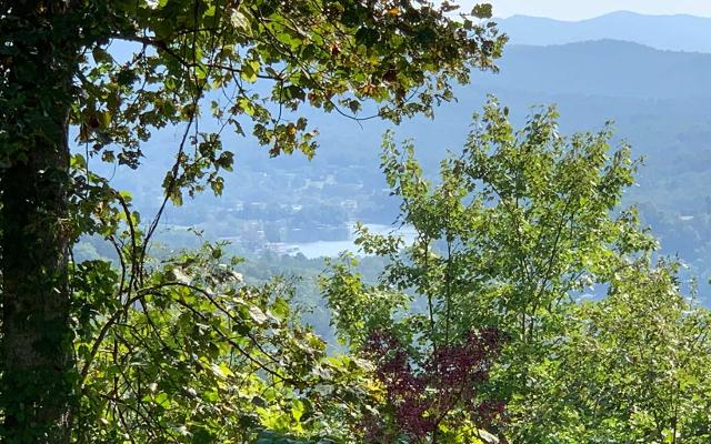 LT 10 Summit, Hiawassee, 30546, GA - Photo 1 of 8
