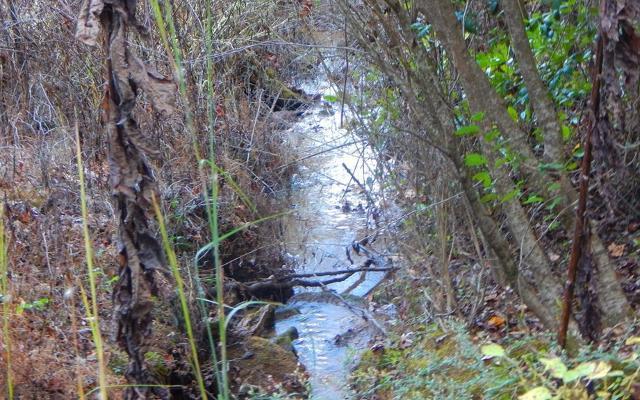 Springbrook, Murphy, 28906, NC - Photo 1 of 14
