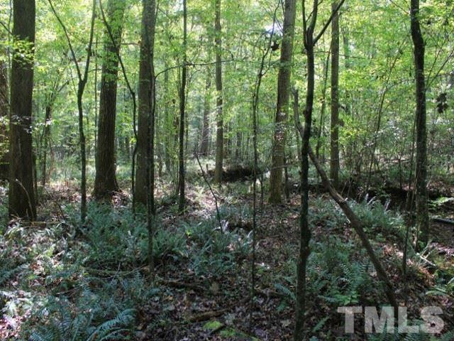Lot 1 Preservation Forest Ln, Efland, 27243, NC - Photo 1 of 3