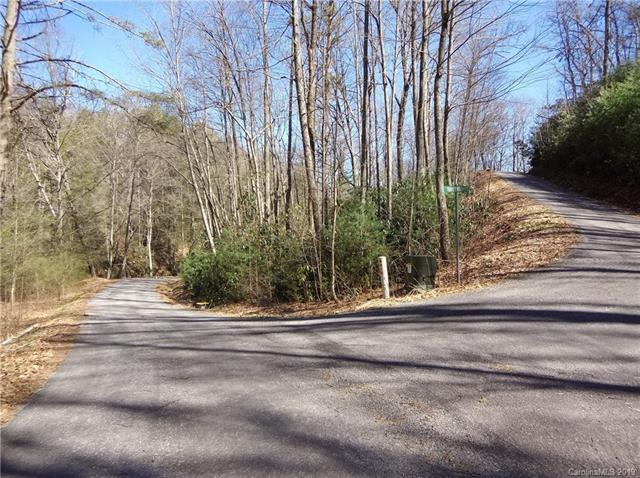 Lot 60 Coyote Hollow Rd, Waynesville, 28785, NC - Photo 1 of 16