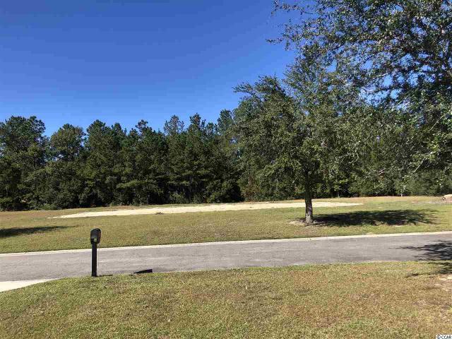 Lot 7 Woodside Trl, Georgetown, 29440, SC - Photo 1 of 6