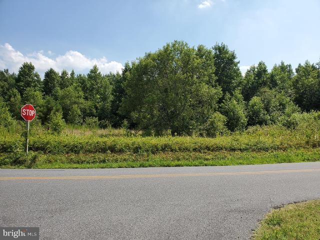 0 Hammond, Bishopville, 21813, MD - Photo 1 of 1