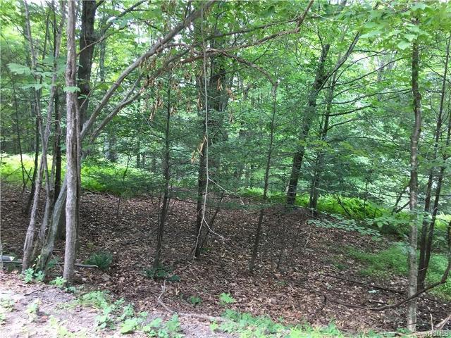 0 Kerness, Greenfield Park, 12435, NY - Photo 1 of 3