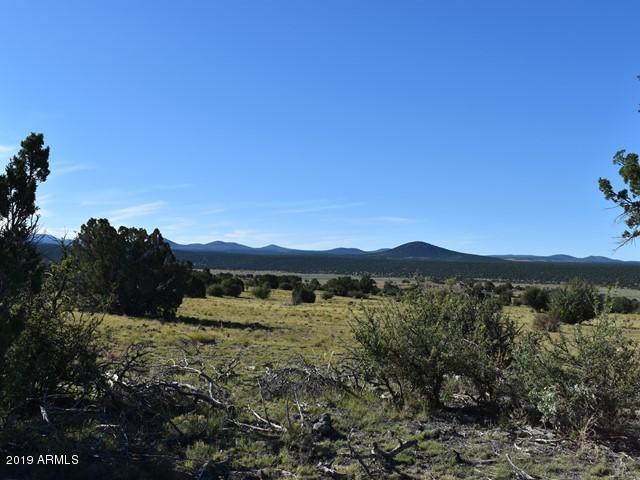 TBD Pioneer Trl, Show Low, 85901, AZ - Photo 1 of 13