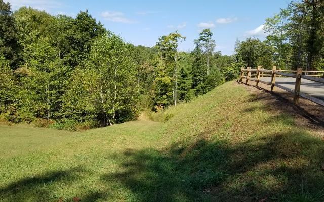 11 Nature Valley, Murphy, 28906, NC - Photo 1 of 17