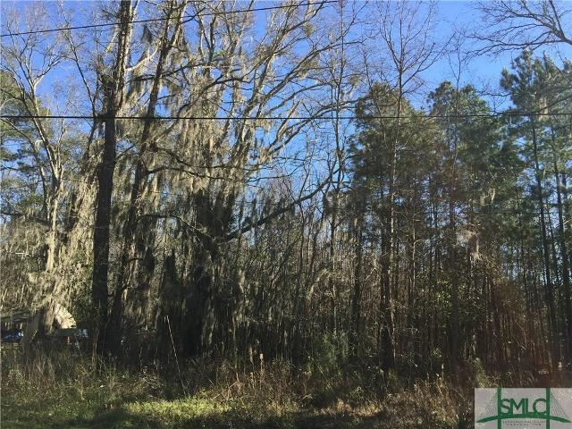0 Hawkinsville, Garden City, 31408, GA - Photo 1 of 8