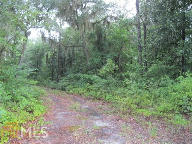 0 Islands, Midway, 31320, GA - Photo 1 of 2
