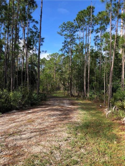 911 Wild Pine Rd, Mims, 32754, FL - Photo 1 of 10