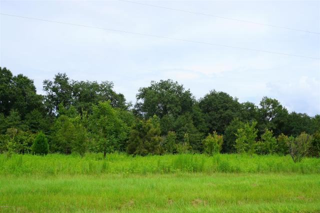 0 County Road 229, Starke, 32091, FL - Photo 1 of 6