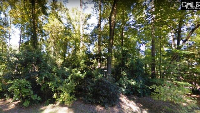 0 Lot 5 Holly, West Columbia, 29169, SC - Photo 1 of 2