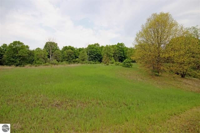Lot 8 Alden Mdws, Alden, 49612, MI - Photo 1 of 33