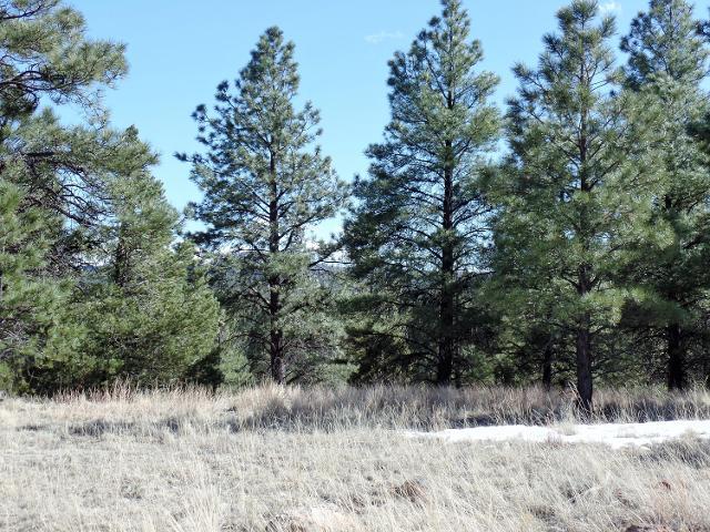 Lot 14 Red Cabin Ranch Ests Estates, Vernon, 85940, AZ - Photo 1 of 15