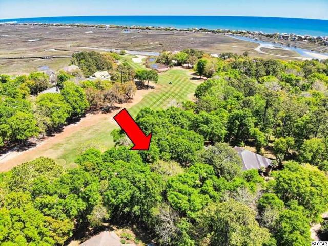Lot 20 Golden Bear Dr, Pawleys Island, 29585, SC - Photo 1 of 17