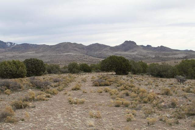 Lot 245 Prairie Schooner --, Wikieup, 85360, AZ - Photo 1 of 29
