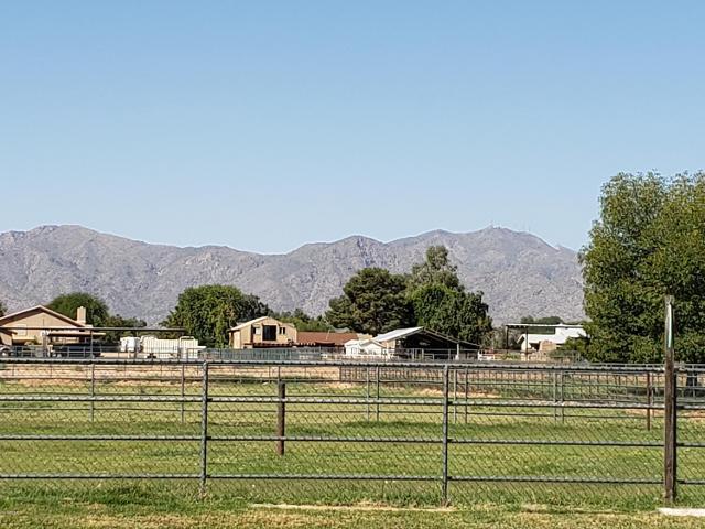 7322 N Cotton Ln, Waddell, 85355, AZ - Photo 1 of 47
