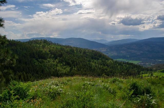 21XX Friedlund, Kettle Falls, 99141, WA - Photo 1 of 11