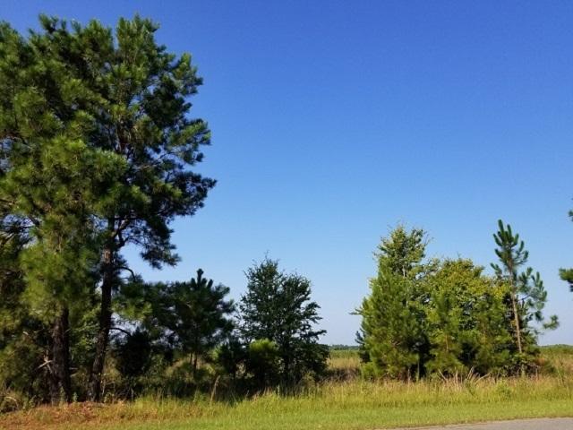 Lot 18 Woodland Trl, Cochran, 31014, GA - Photo 1 of 3