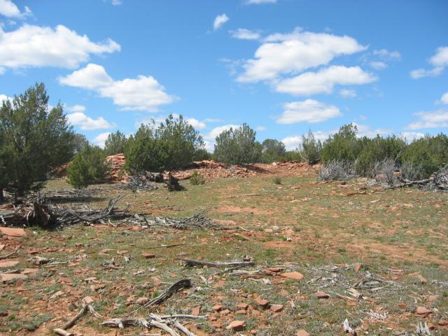 00 N Askfork Area Rd, Ash Fork, 86320, AZ - Photo 1 of 7