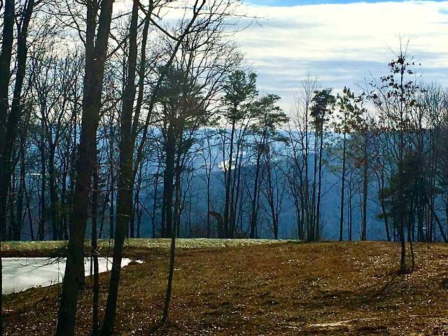 0 Cumberland Cir Unit49, Jasper, 37347, TN - Photo 1 of 12