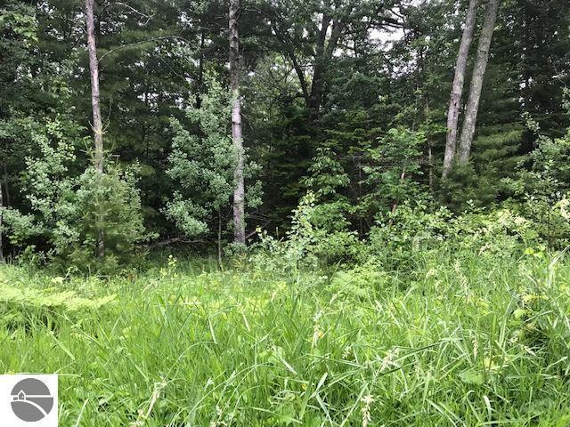 Lot 32 Deepwater, Williamsburg, 49690, MI - Photo 1 of 12