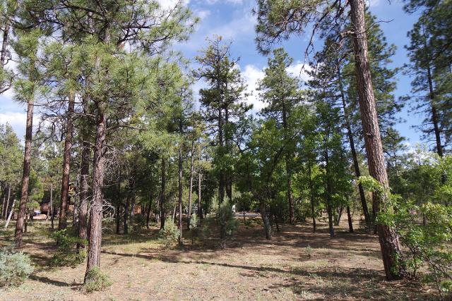 5019 Silver Mountain Dr, Lakeside, 85929, AZ - Photo 1 of 8