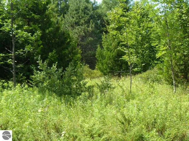 1347 N Leland Estates Dr, Leland, 49654, MI - Photo 1 of 16
