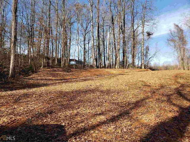 0 Barnes Mill Rd Lot 47, Murrayville, 30564, GA - Photo 1 of 5
