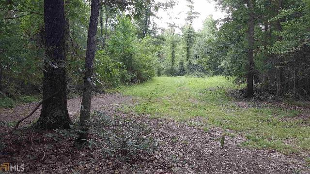 0 The River Lndg Lot 34 Lndg Unit 34, Midville, 30441, GA - Photo 1 of 9