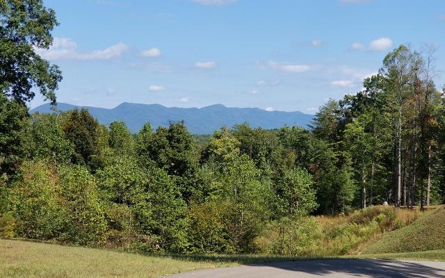 12 Nature Valley, Murphy, 28906, NC - Photo 1 of 17