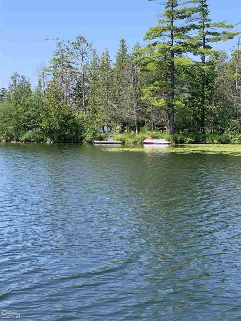 0 Long Lake, Hale, 48739, MI - Photo 1 of 5