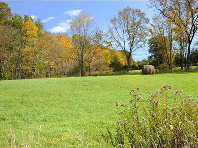 454 County Route 17, Montgomery, 12549, NY - Photo 1 of 34
