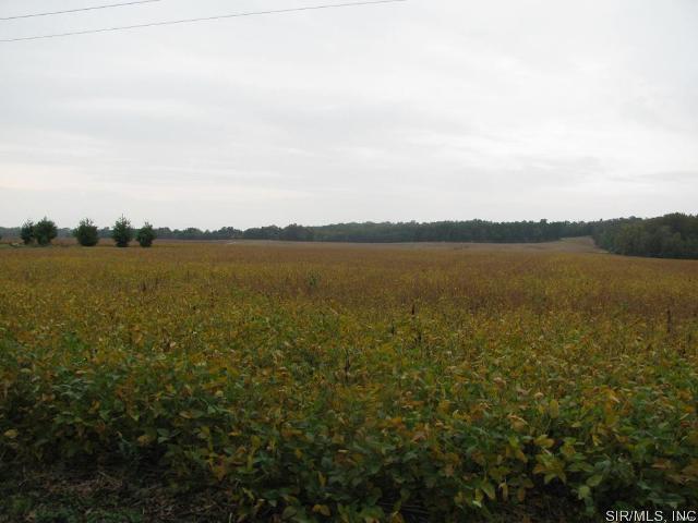 0 Clayton Rd Unit11, Carbondale, 62901, IL - Photo 1 of 2