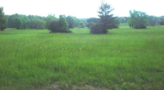 Lot 1163 Lake Wildwood, Varna, 61375, IL - Photo 1 of 29