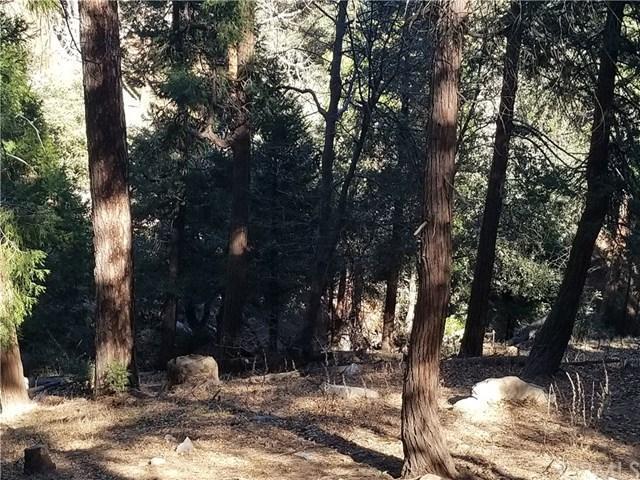 0 Deer Run Rd, Cedarpines Park, 92322, CA - Photo 1 of 4