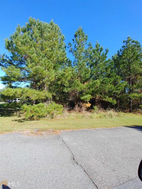 0 Buchanon Landing Dr Unit 6, Folkston, 31537, GA - Photo 1 of 13