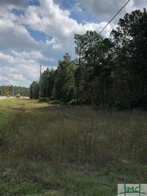 0 Fort Argyle Rd, Bloomingdale, 31302, GA - Photo 1 of 2