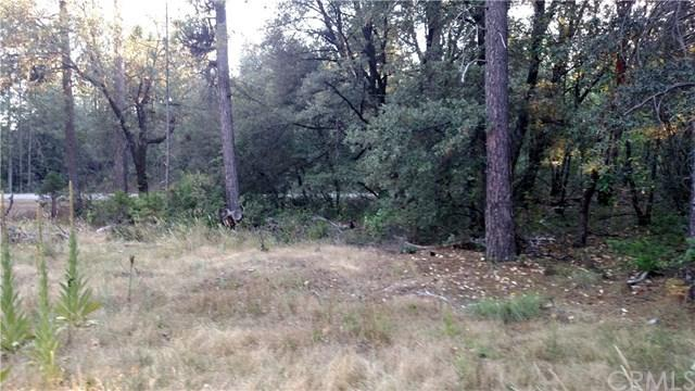0 Coyote Rd, Berry Creek, CA - Photo 1 of 11