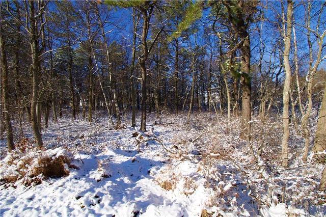 2163 Nosirrah Rd, Penn Forest Township, 18210, PA - Photo 1 of 8