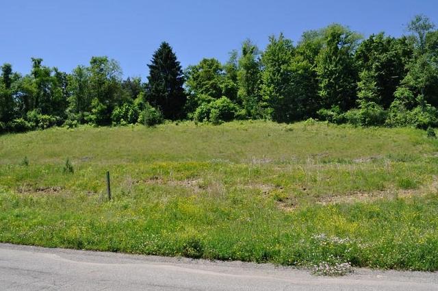 109 Field Brook Ln Lot 4, Gibsonia, 15044, PA - Photo 1 of 1