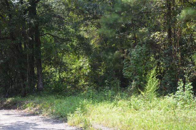 0000 Hewett Rd, Defuniak Springs, 32435, FL - Photo 1 of 3