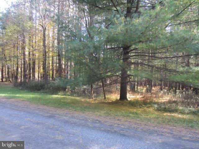 Deer Run Rd, Swanton, 21561, MD - Photo 1 of 5
