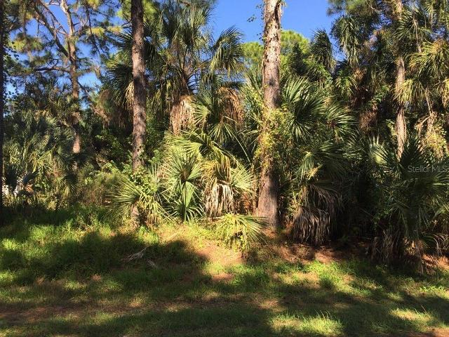 Lot 10 Rabbit Ave, North Port, 34291, FL - Photo 1 of 2